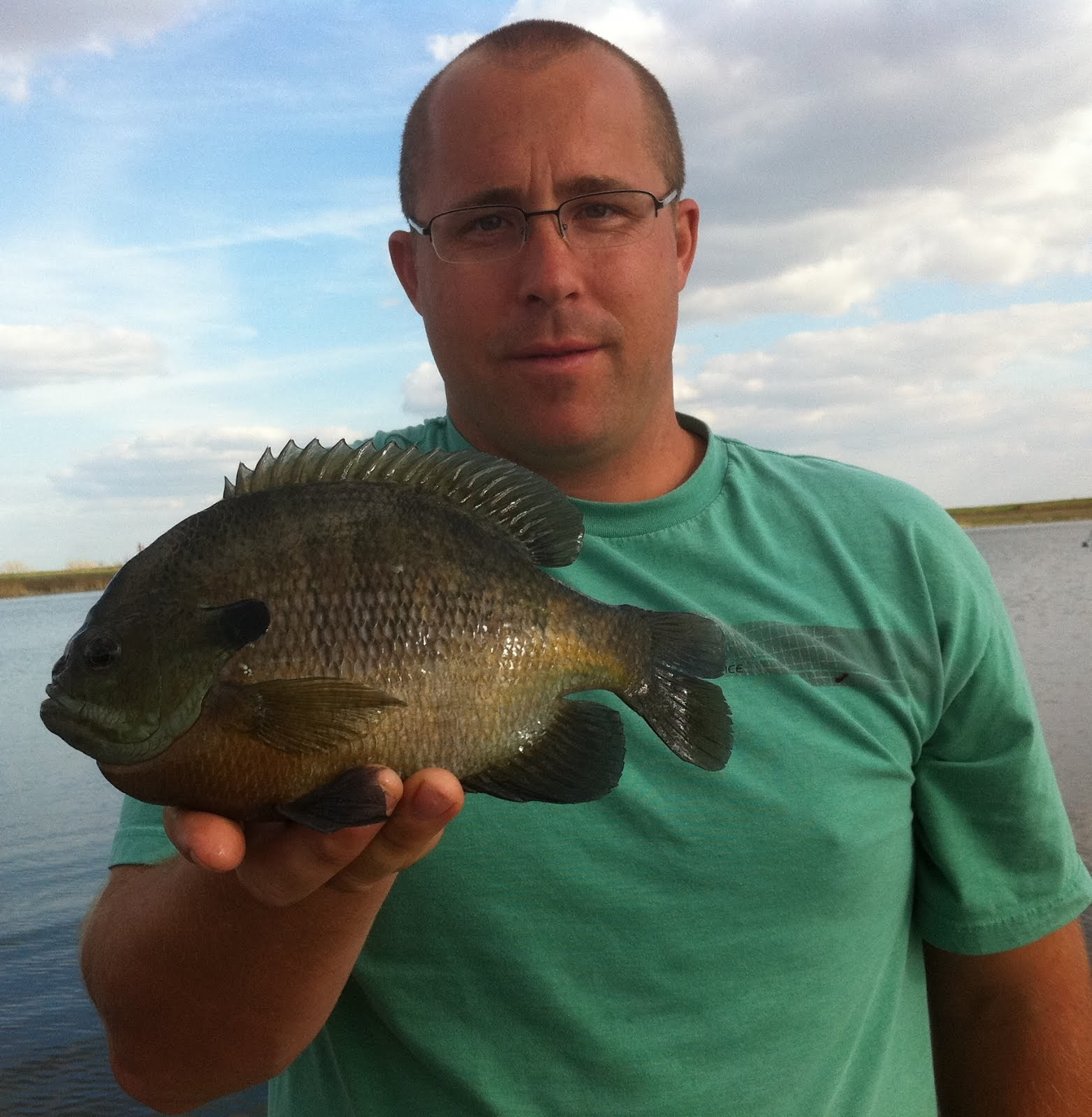 Huge Bluegill