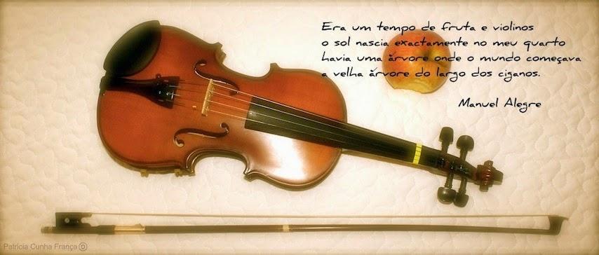 tempo de fruta e violinos