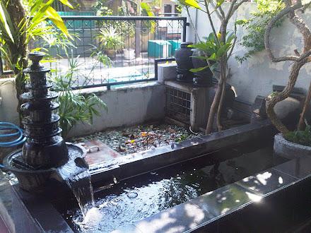jasa kolam ikan koi: design kolam
