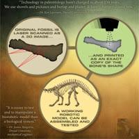 Dinosaur 3D Image