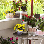 Flower Pots DIY