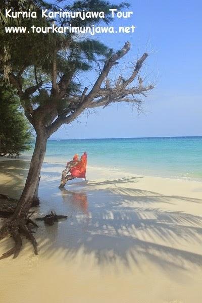 kebersihan pantai karimunjawa