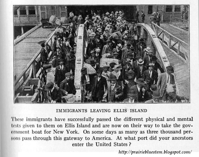 compare contrast german irish immigration america Today's volume of immigrants is in some ways a return to america's past in the united states germans made up the biggest immigrant group in 18 states and the district of columbia, while mexico accounted for the most immigrants in just three states (arizona.