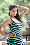 Asmita Sood Glamorous Photos-thumbnail-20