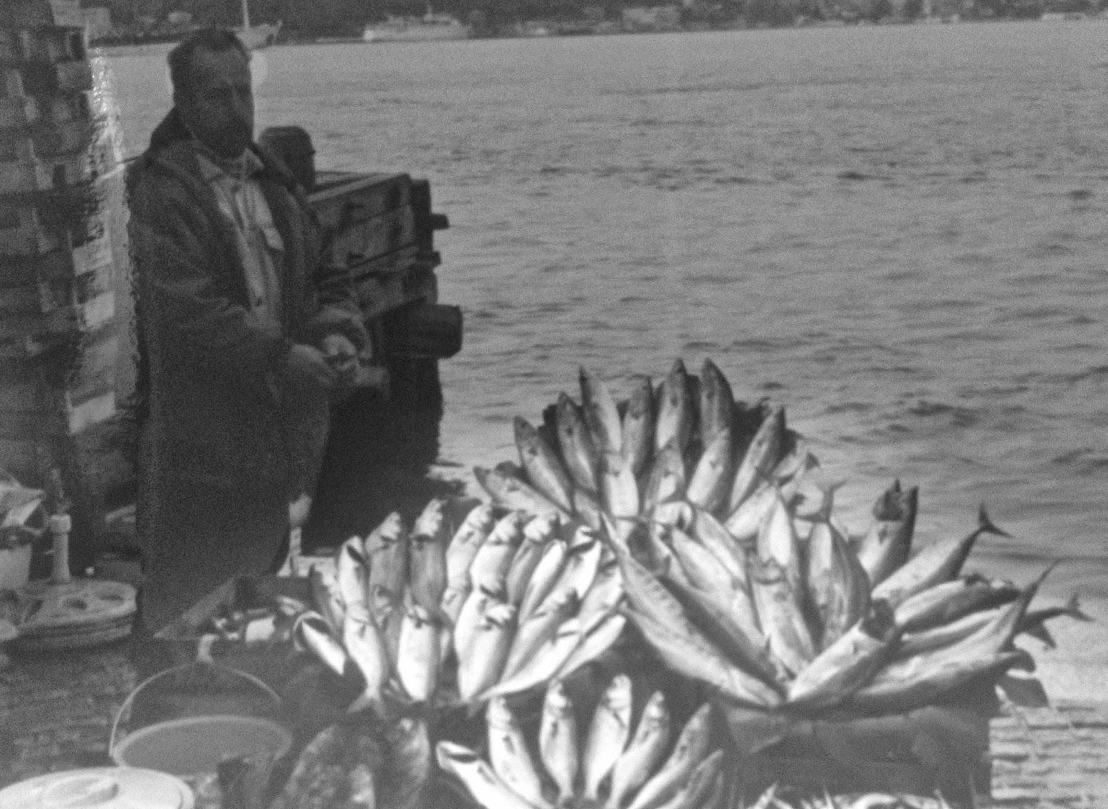 fishmonger Istanbul: simplelivingeating.com