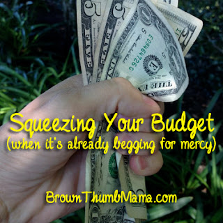 Squeezing your budget (when it's already begging for mercy)