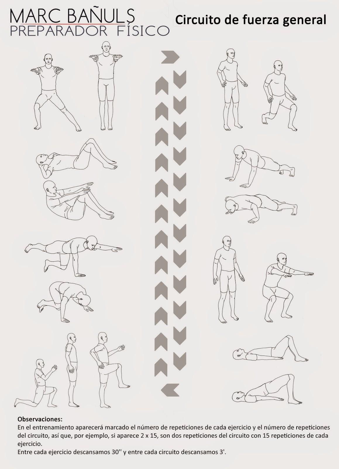 Circuito General : Preparador físico marc bañuls circuito de fuerza general