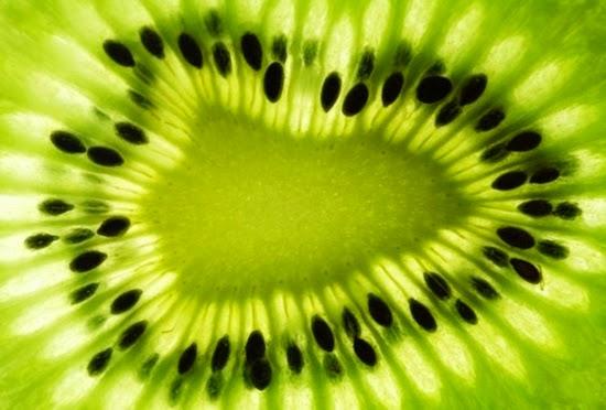manfaat dan khasiat biji kiwi