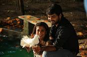 Raja Rani Movie Photos Gallery-thumbnail-17