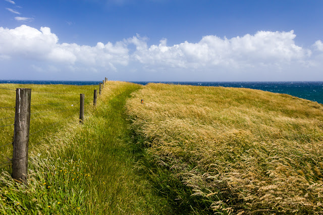 grass path on cliff top