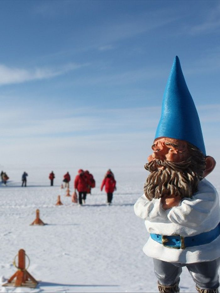wiki travelling gnome prank