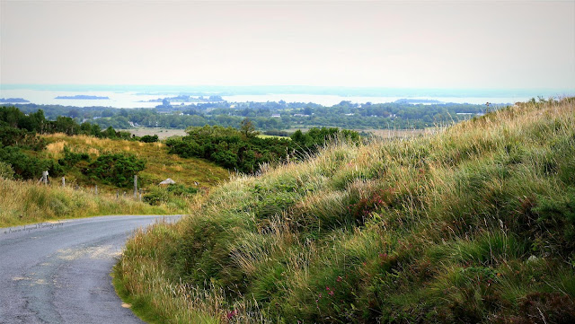 view of the Lough Corrib in the background , summer green grass and heather all around