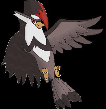 burung-net