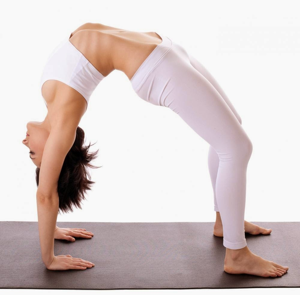 Fundamental Yoga Postures, Exercises, And Poses