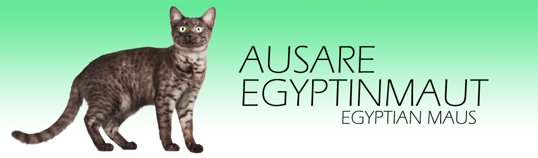 Ausare Egyptinmaut / Ausare Egyptian Maus