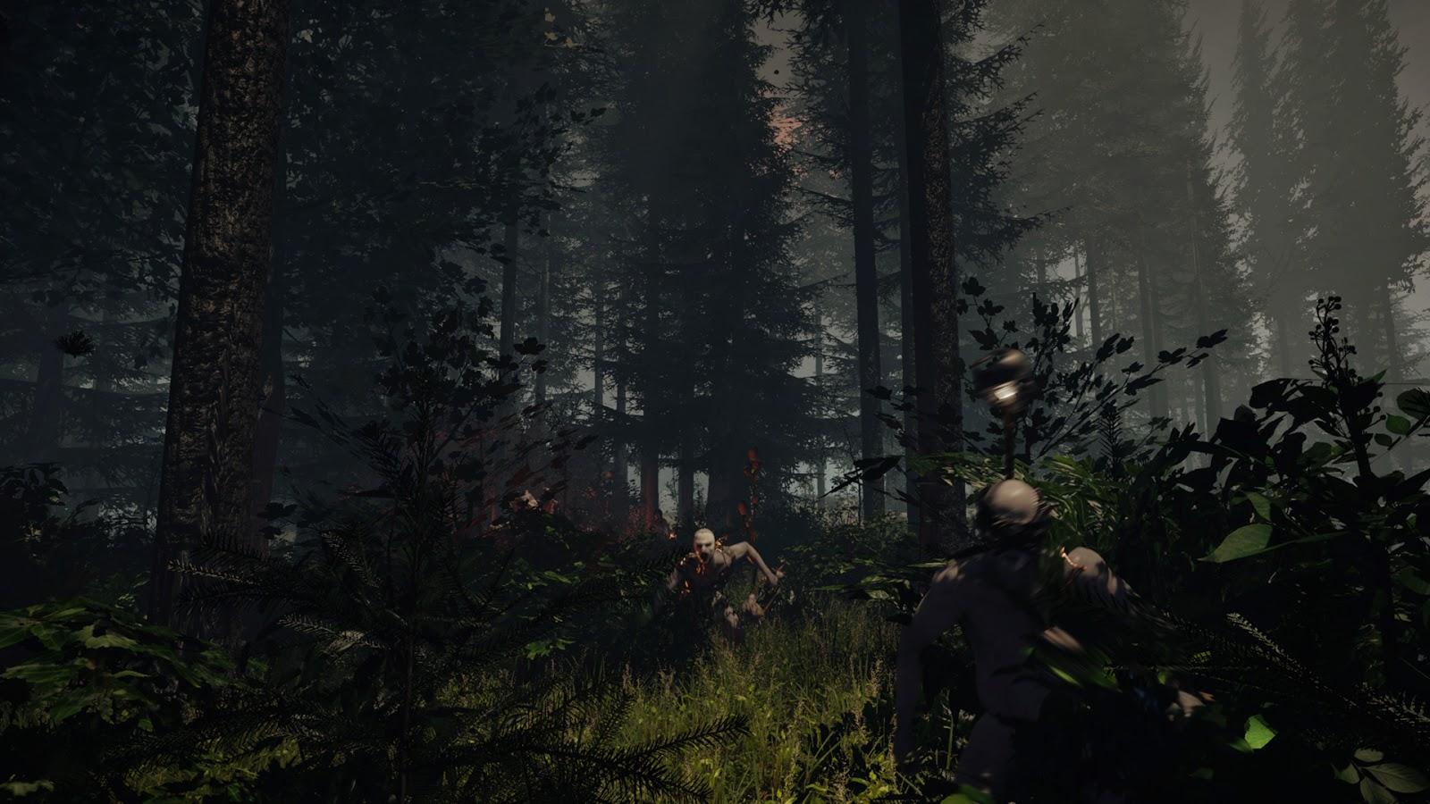Spesifikasi PC Untuk The Forest