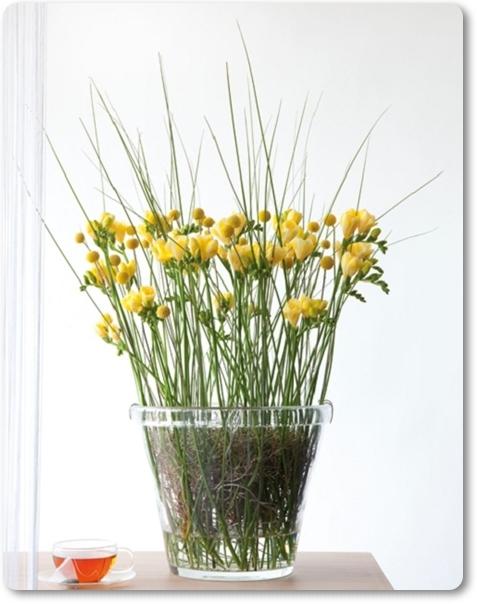 craspedia, freesia, gul freesia, arrangemang med gräs