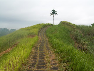 Gowes ke Bukit Campuhan Ubud 1.jpg