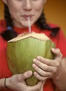 gambar orang minum air kelapa muda