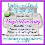 Vinyl University