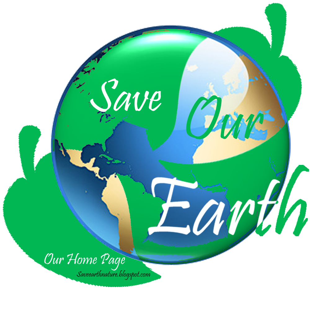 """saving our earth Environmental law: working to save the earth  """"our practice of environmental  law focuses on litigation to protect people and places by enforcing."""