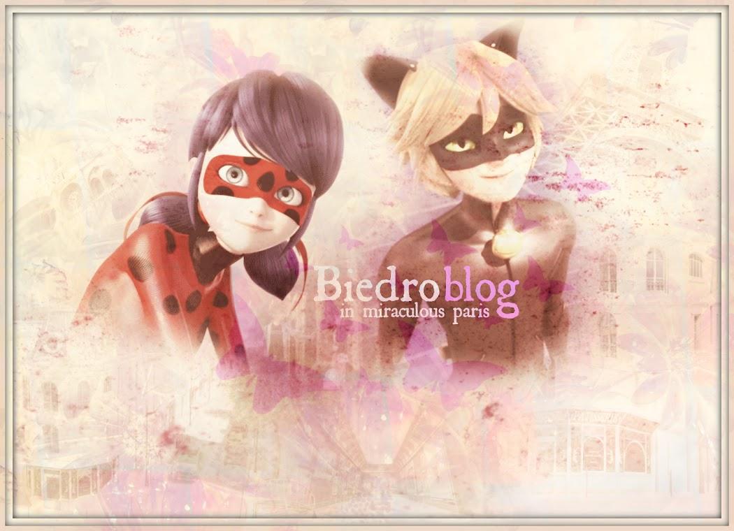 Biedroblog