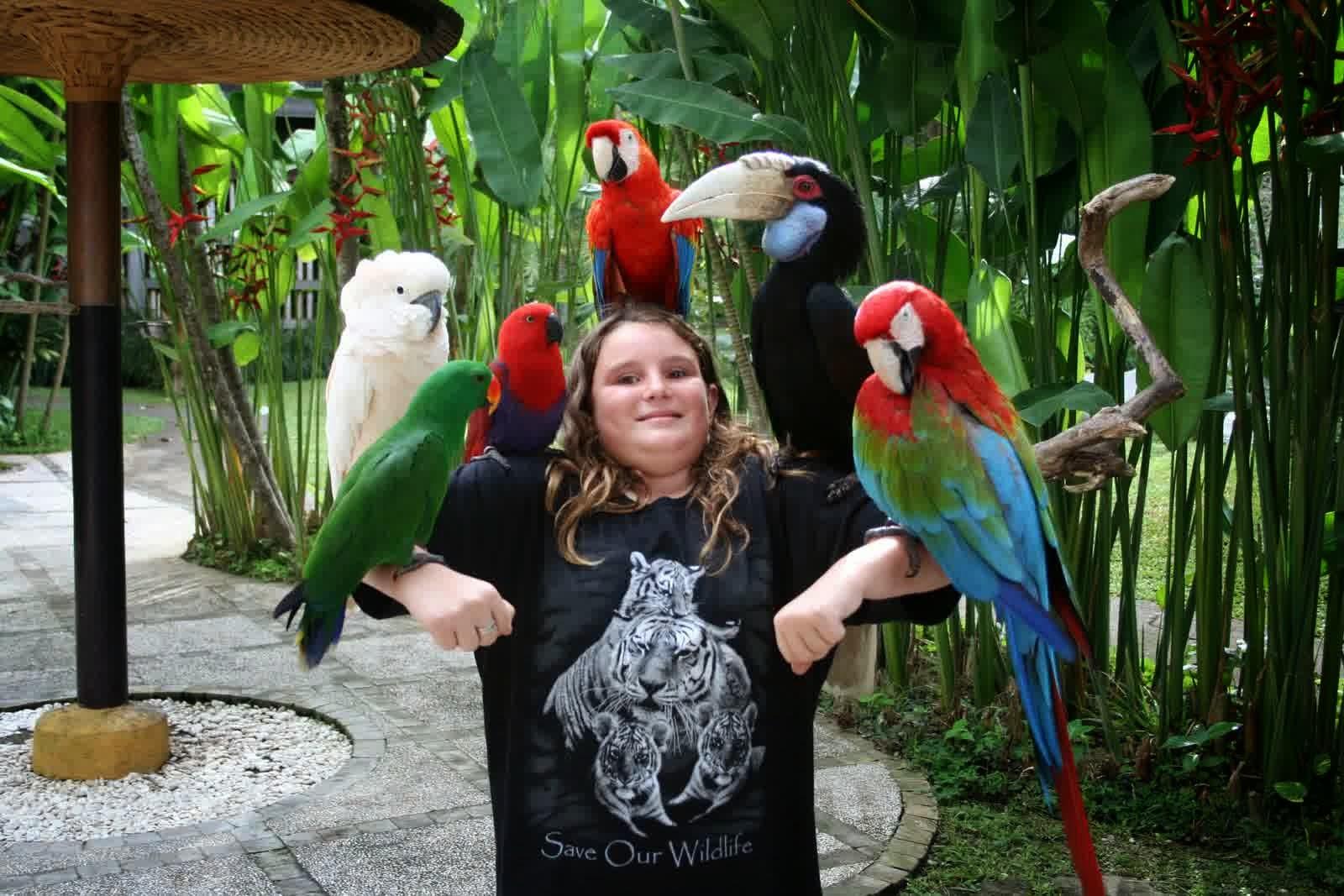 Tempat Wisata Di Bali Bird Park Voucher Tiket Masuk Anak