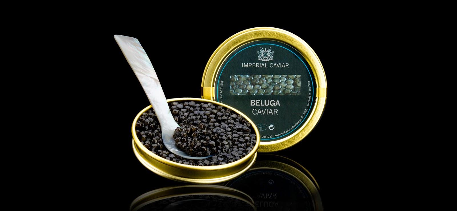 """<img src=""""http://4.bp.blogspot.com/-6QVYiV23P54/U6HAJcuTUZI/AAAAAAAAARU/PJuGzjQmWpk/s1600/Imperial-Caviar-Beluga-Caviar-50g.jpg"""" alt=""""Most Expensive Food in the World"""" />"""