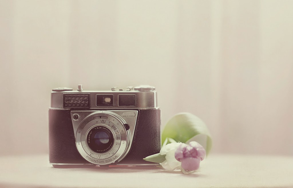 Fotografía vintage Sole Picado