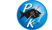 PK Sub