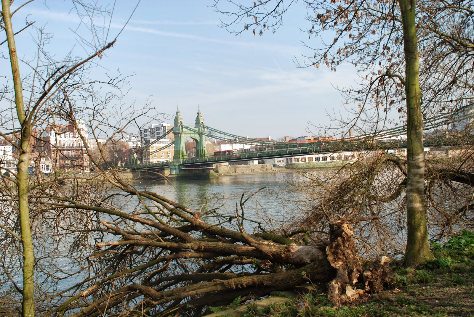 Best dog walks in West London: Part 2: Thames Tow Path