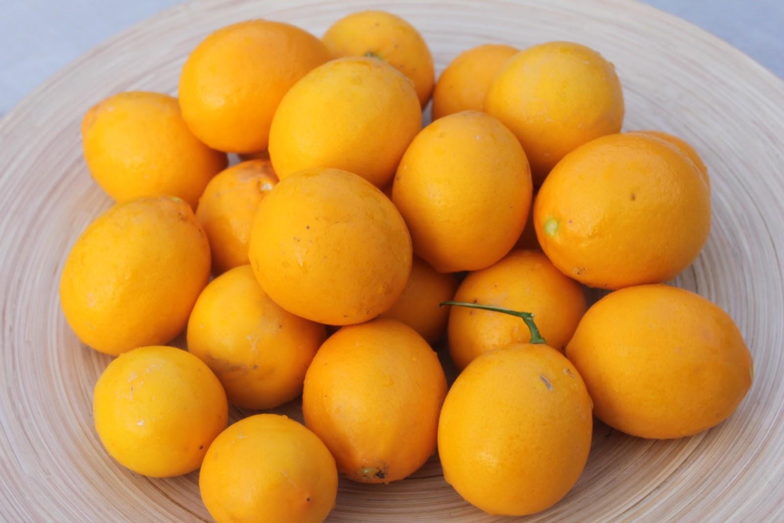 Chowbacca!: Preserved Meyer Lemons
