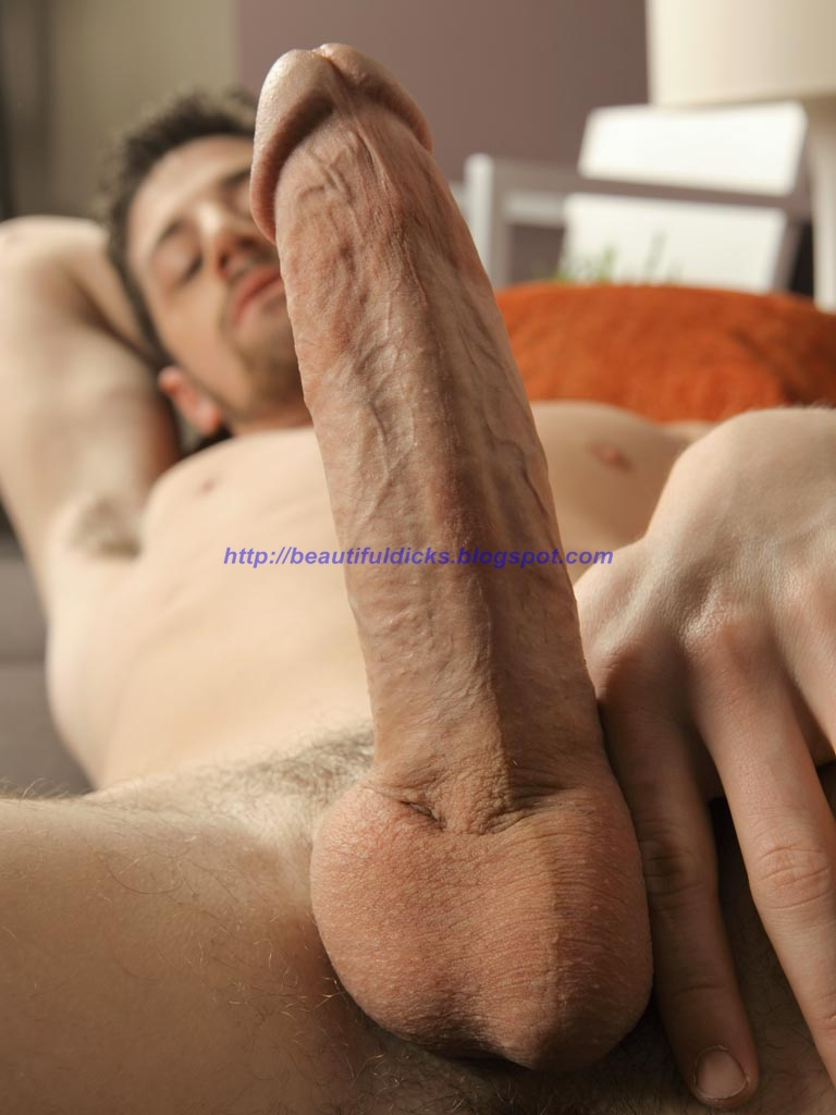 gay big cock lady escort