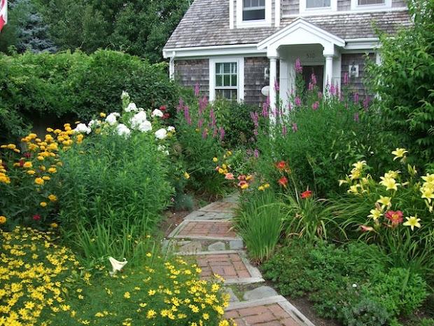 casual casa natural landscaping