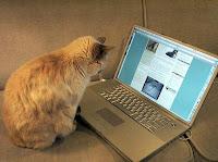 Peluang usaha menjadi blogger image