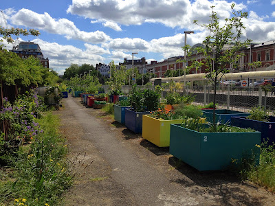 Kensington Olympia Community Kitchen Garden, London
