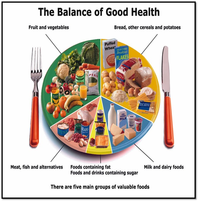 Young People S Food Choices Uk