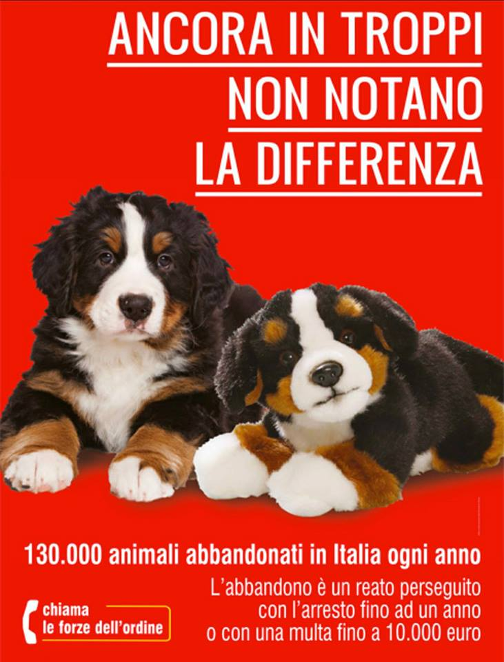 NO ALL'ABBANDONO