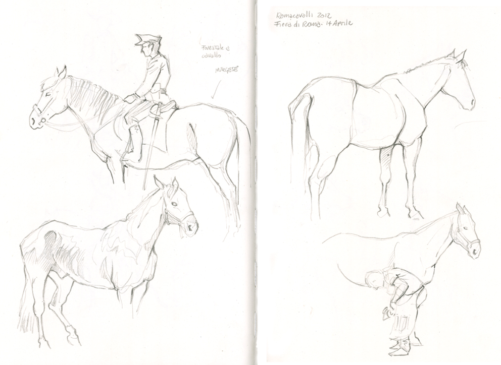 Urban sketchers italy romacavalli 2012 for Disegni di cavalli a matita