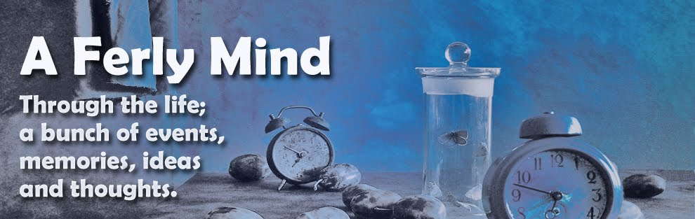A Ferly Mind