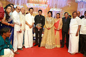 Amala paul vijay reception-thumbnail-31