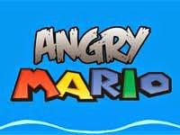 Le jeu Mario Angry Birds