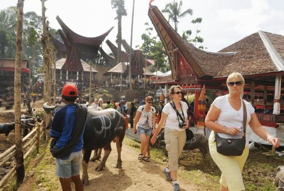 Tourists tana toraja