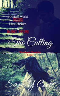 Young Adult New Adult paranormal romance