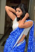 Bindhu latest sizzling saree pics-thumbnail-10