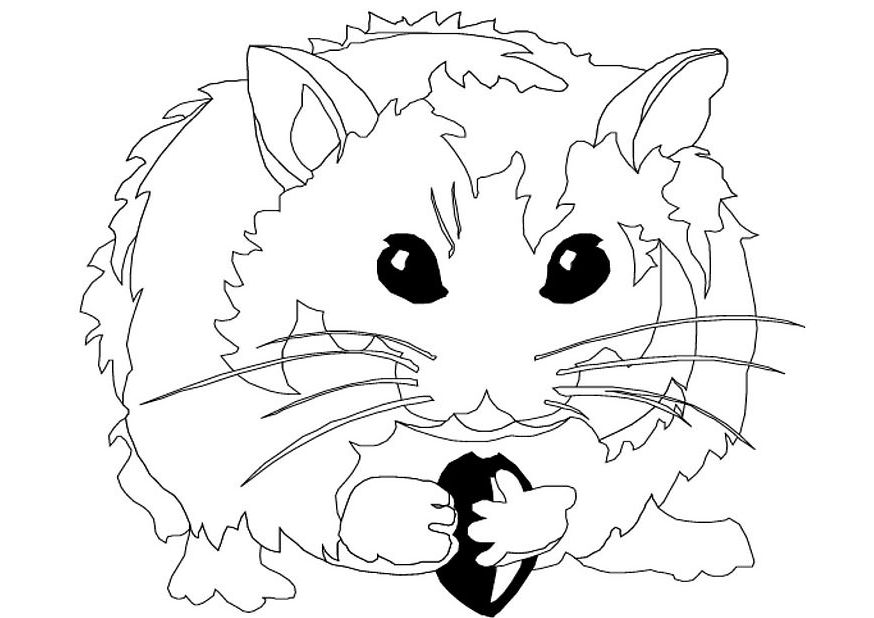 genetics coloring pages - photo#33
