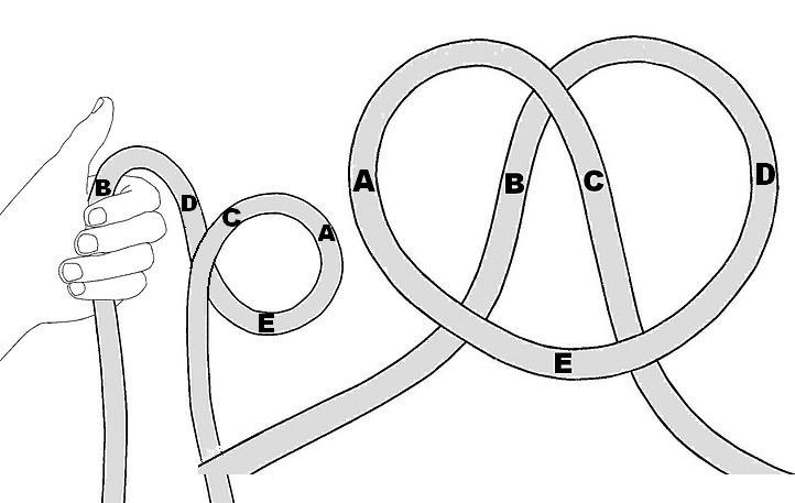 Brilliant Lpt The Bowline Knot May Be The Most Useful Knot Because Wiring Database Ilarigelartorg