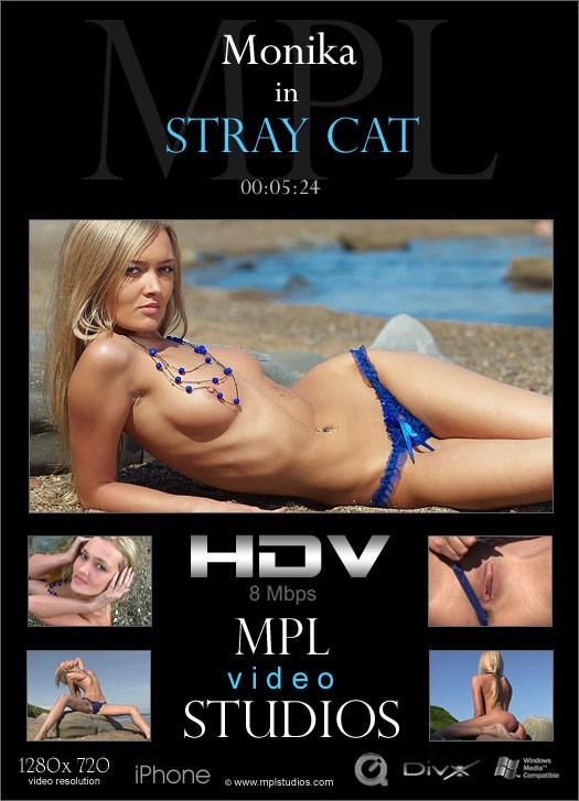 GkboLStudioe 2012-05-29 Monika - Stray Cat (HD Video) 09230