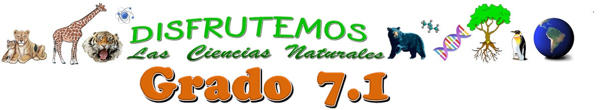 MAURIS 7-1 SEDE EDUARDO SANTOS