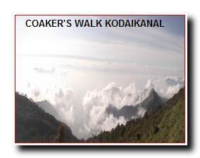 COAKER'S WALK KODAIKANAL